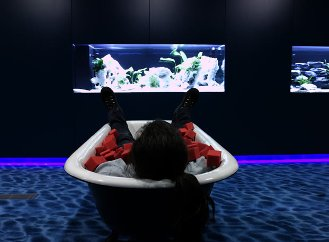 water-loungue-google